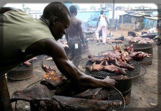 la viande que nous mangeons est traitée dans des conditions non contrôlées