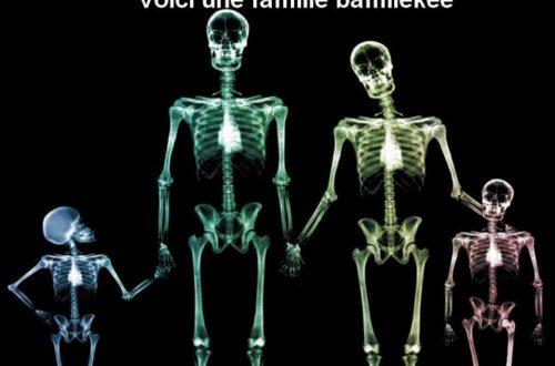 Article : Radioscopie du tribalisme à la camerounaise