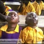 Au Cameroun, il y a aussi le « business » de l'éducation