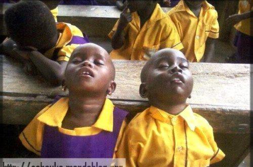 Article : Au Cameroun, il y a aussi le « business » de l'éducation