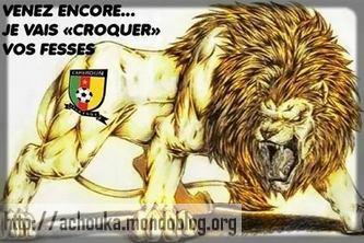L'emblème fétiche de la Fécafoot, c'est le Lion qui rugit