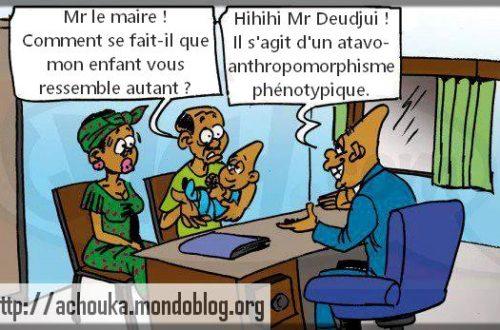 Article : Le vrai problème du Cameroun, c'est le long français