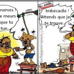 Au secours, les Camerounais sont devenus fous !