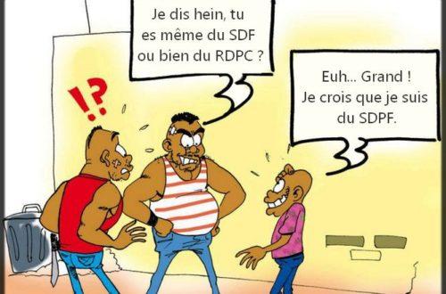 Article : Mais de quoi parlent-ils au juste, les Camerounais ?