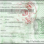 Comment j'ai réussi à obtenir ma carte d'identité au Cameroun