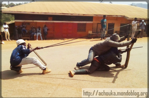 Article : Nous devons condamner la guerre de sécession au Cameroun !