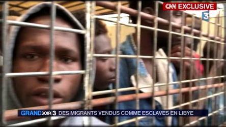 des migrants en cage