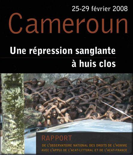 rapport des Nations-Unies sur les émeutes de février 2008 au Cameroun