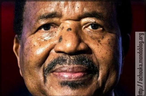 Article : Paul Biya, les Camerounais veulent que tu partes !