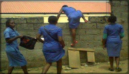des filles qui escaladent le portail de leur lycée