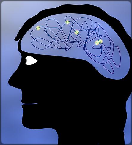dessin cerveau de femme