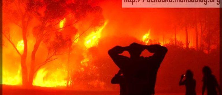 Article : Pourquoi y a-t-il autant d'incendies au Cameroun ?