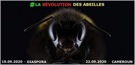 visuel de la révolution des abeilles au Cameroun