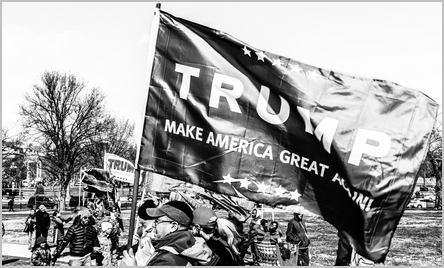 manifestations pro-Trump
