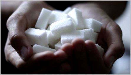 des morceaux de sucre dans les mains